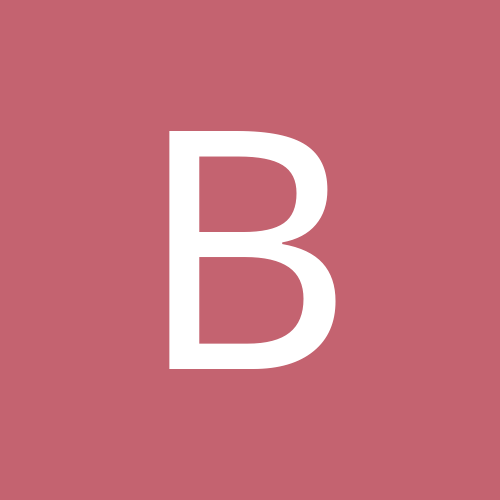 bradolson